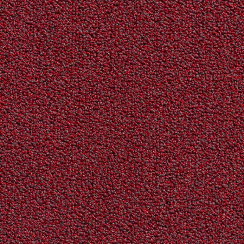 Wall-to-wall Carpet Jam