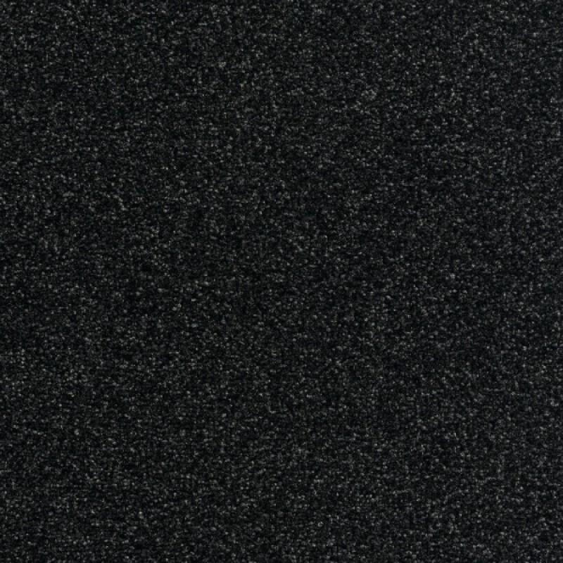 Wall-to-wall Carpet Sea